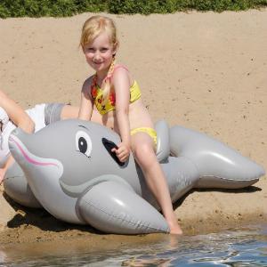 Reittier Delfin