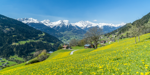 Ein unvergleichliches Alpenpanorama in Österreich