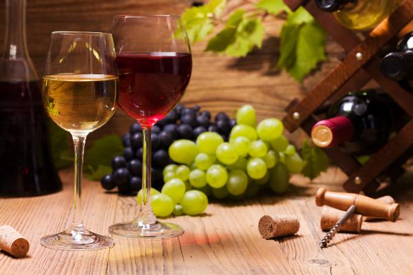Camping in Frankreichs weitläufigen Weinregionen