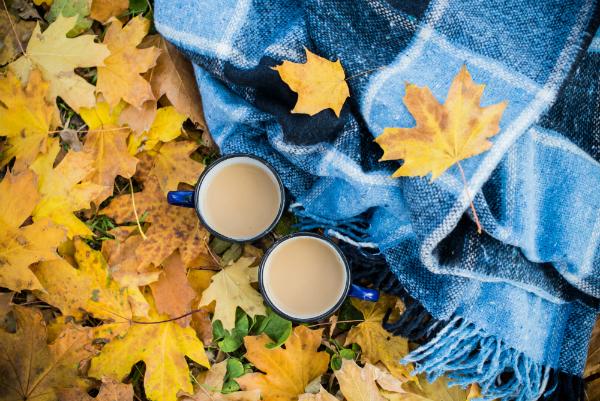 Herbstcamping auf Campingplätzen bietet neben der romantischen Natur auch viele Indooraktivitäten