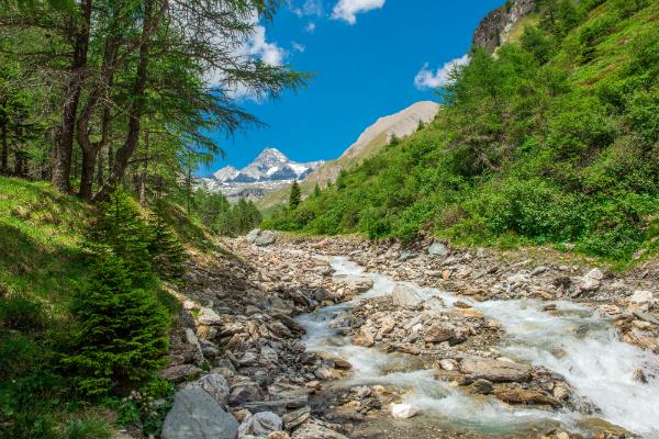 Idyllischer Bergfluss am Grossglockner