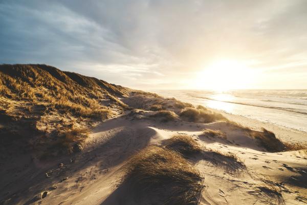 Sonnenuntergang daenische Nordseekueste