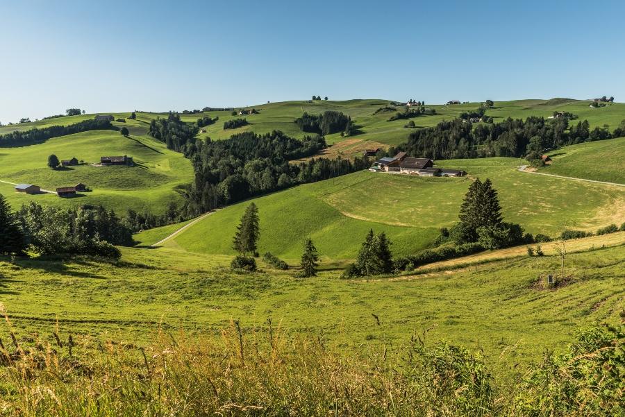 Typische Landschaft im Appenzellerland urlaubsregionen-schweiz