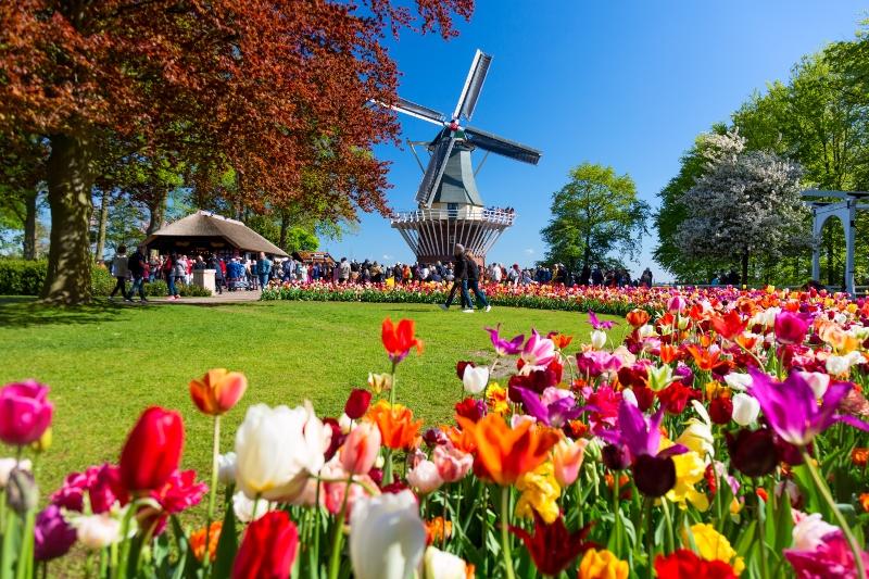 holland-camping-in-den-niederlanden