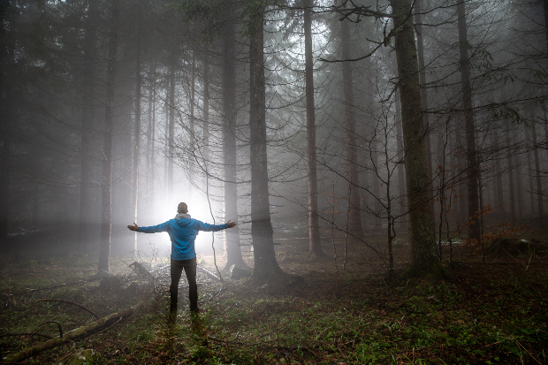 Ein Mann, der mitten im Wald steht, breitet die Arme aus, atmet durch und genießt die Natur