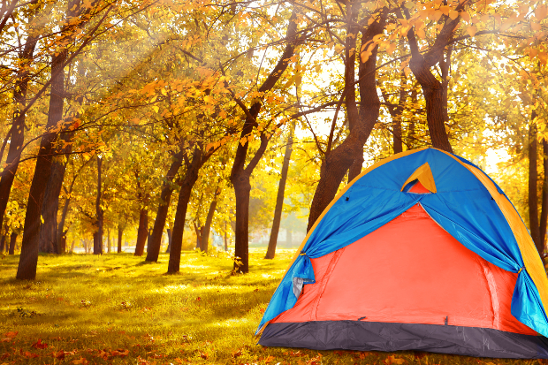 Zelt im Herbstwald - Camping im Oktober